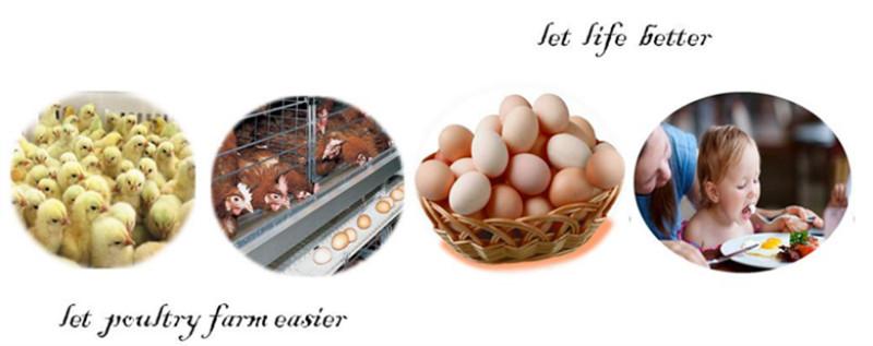 food trolley chicken eggs
