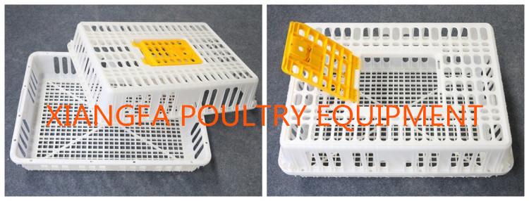 poutry transport basket