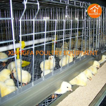H Type Broiler Cage 3 Tiers Semi 72 Birds