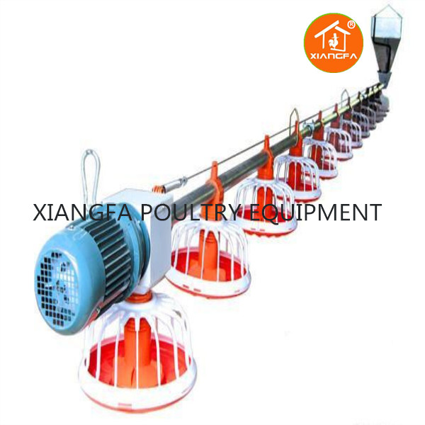Broiler-feeding-system