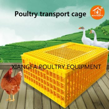 Chicken Transport Crate