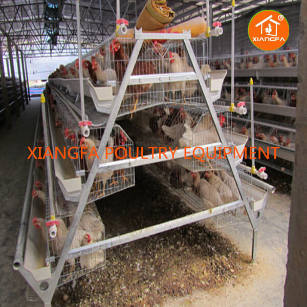 Egg Laying Chicken Cage