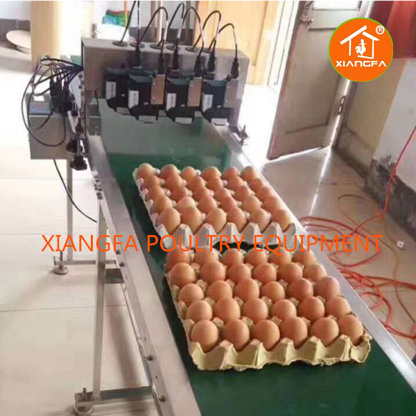 Egg Printer Six-head