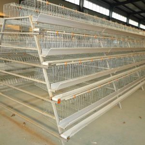 Rabbit Breeding Cage Design